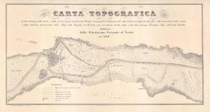 TESI_TANZARELLA-224